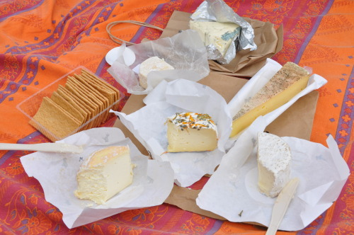 cheesy picnic near Point Reyes, CA :)