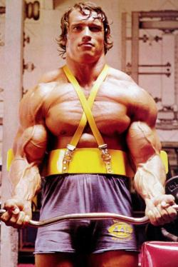 Arnold  [view all posts of Arnold]