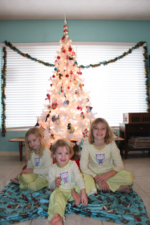 Our little ladies, complete with bed head & matching pajamas.  *Amelia and Maggie are with their half sister, Baylee