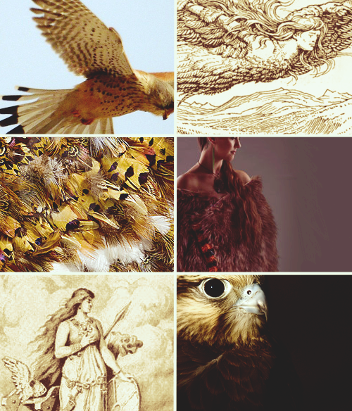 keerabella:  Mythology meme: two mythological object - The Falcon Cloak (2/2)