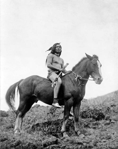 equine-hourglass:   Incredible picture of a Native American warrior riding a cross between the Appaloosa and Akhal Teke breeds, called the Nez Perce horse. Picture from 1910.