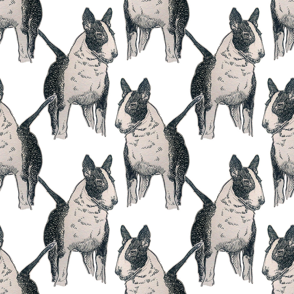 Old English Bull Terrier in ink.