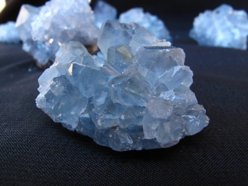 witchywonderworks:  Featured Gemstone: Celestite  Celestite is a water element stone connected to the throat chakra. Its gentle nature makes it useful for compassionate communication. It acts as a conduit for communication with spirit guides, and provides access to the subconscious (placing a piece under your pillow encourages dream recall).  It is soothing for stress and tension on physical, emotional, and spiritual levels.