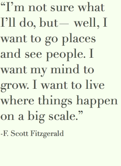 F. Scott Fitzgerald is awesome.