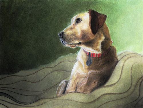 AP Art it's my dog <3