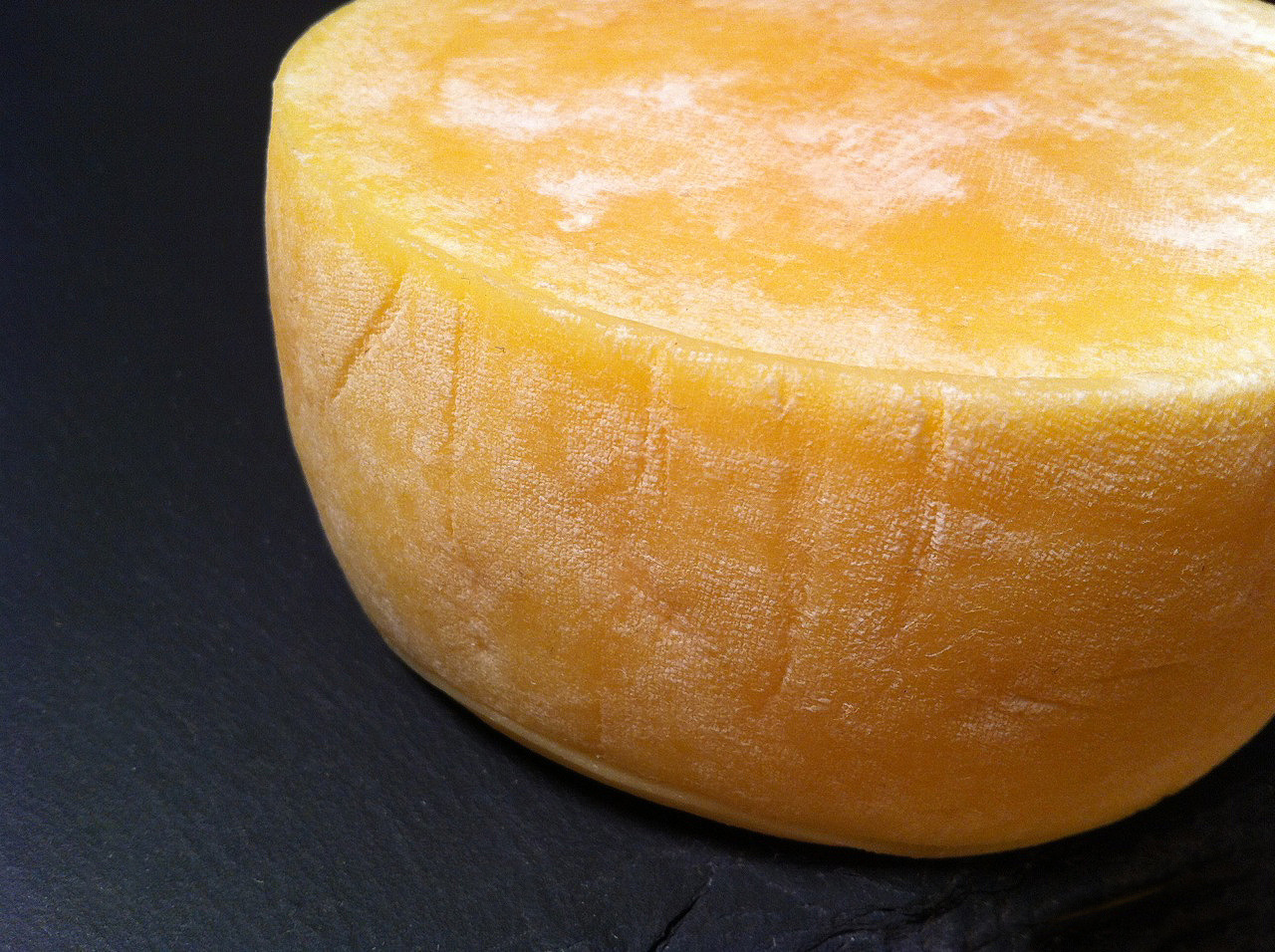 Homemade Tomme, developing a rind.