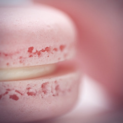 pink (strawberry) macaron by Morningdew Photography on Flickr.