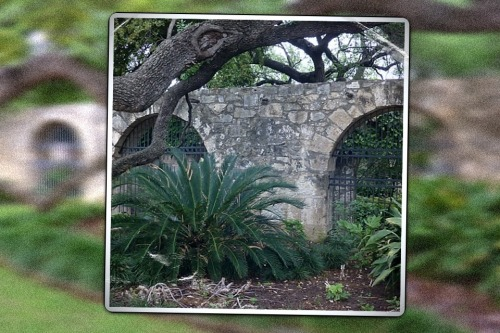 The Alamo.  San Antonio.  Texas..