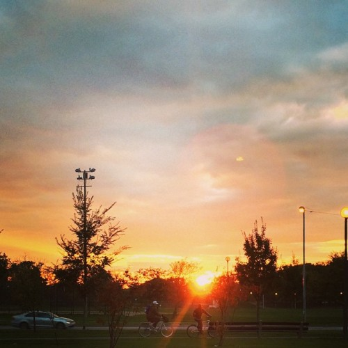 I'm a sunset paparazzo #HumboldtPark