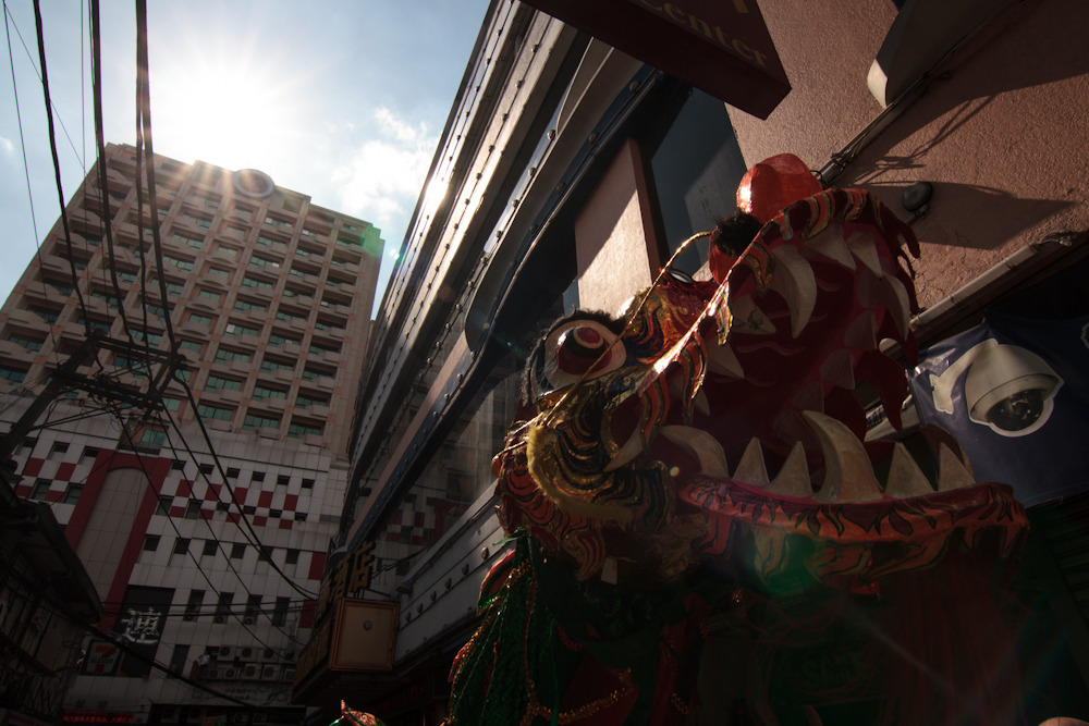 Dragon Highlight  Shot during the celebration of the Chinese New Year in Binondo, Manila, Philippines.