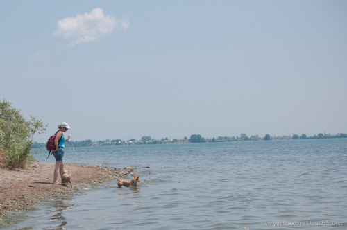 Sawyer, Charlie and my mom at our dog beach. Can't wait for this summer!!