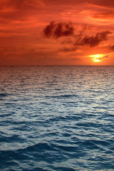 wild-earth:  Indian Ocean By jogorman