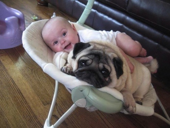 my-queeries:  I will do this with my baby and puppy!
