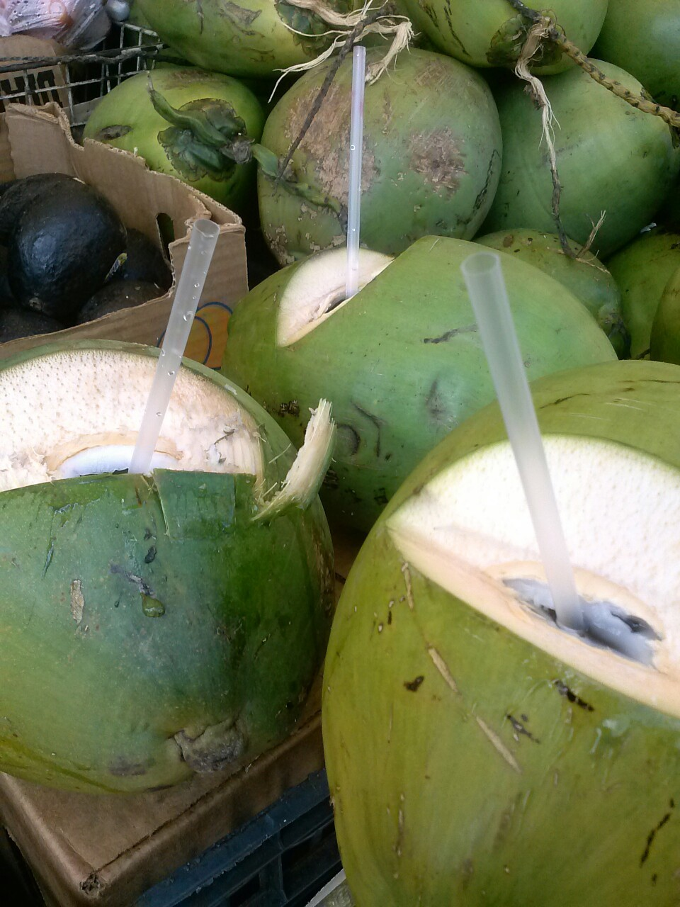 thecakebar:  Mom is in town so we went for some coconut water!