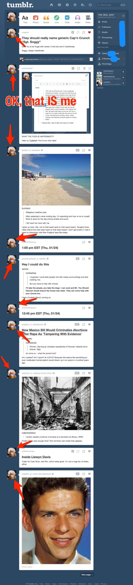 "Brilliant.  Keep ""improving"" Tumblr."