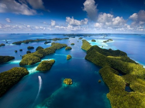 jenniferonce:  The Island of Palau in Western Pacific Ocean