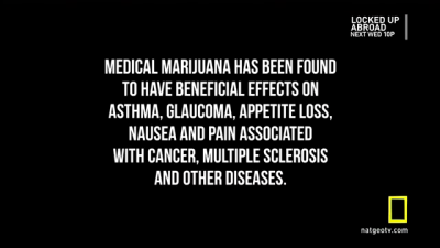 weedporndaily:  Medical Marijuana has been found to have beneficial effects on asthma, glaucoma, appetite loss, nausea and pain associated with cancer, multiple sclerosis, and other diseases.