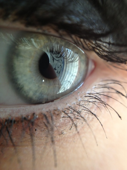 This is my eye. No idea what color my eyes are tbh. I say I have graybluegreen eyes. :] And I love my macro lens for my phone. ♥