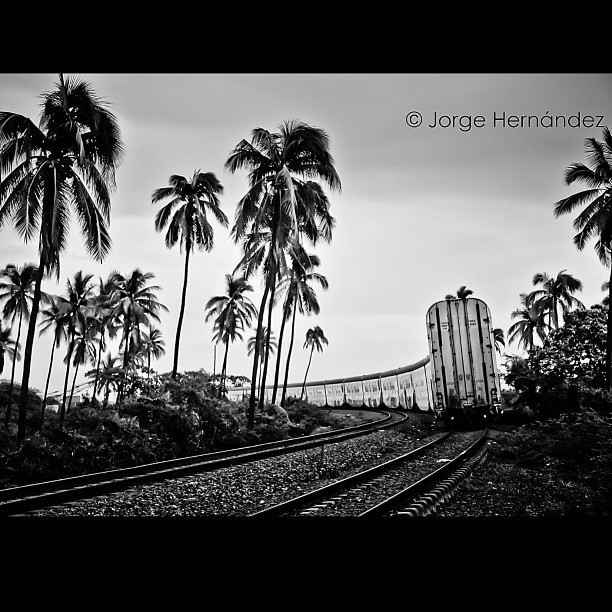 Tren #nikon #d90 #tren #train #travel #igers #blackandwhite #byn #bw #mexico #mexique #igers #instagram #michoacan