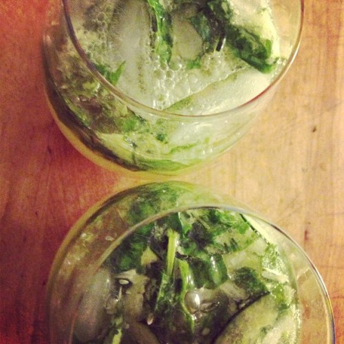 Basil cuke lime #Hendricks #cocktail.  #datenight #spring