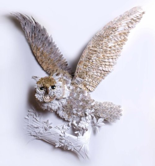 Illustrated paper Owl by Hazel Buchan