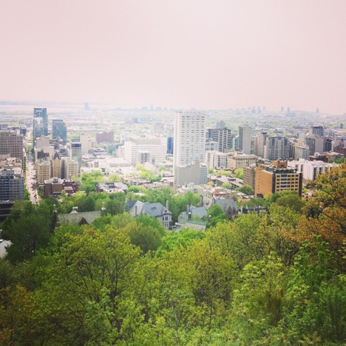 #montroyal #montreal @vodkaandfashion @refusecomfort