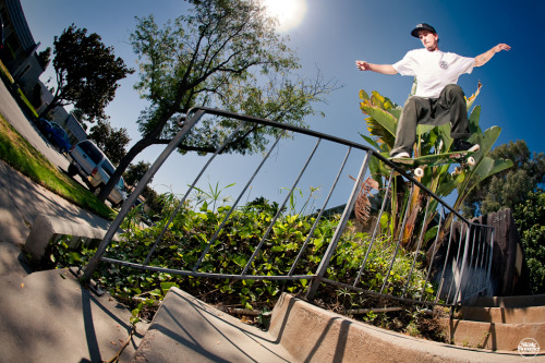 TAYLOR BINGAMEN BACK CROOK KINKED RAIL