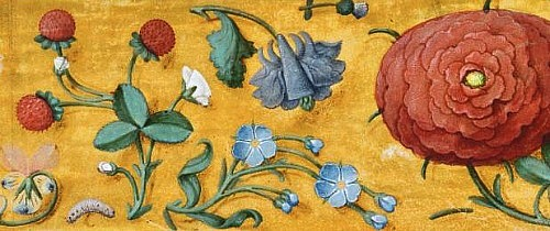 stilllifequickheart:  Unknown (Flemish) Illuminated Manuscript 1500-10