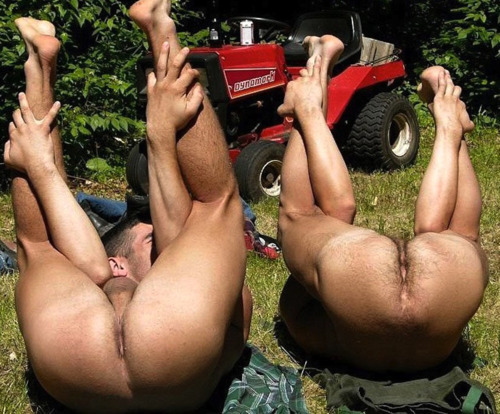 ilickholes:      Holes-The Office of Orifice Inspection.