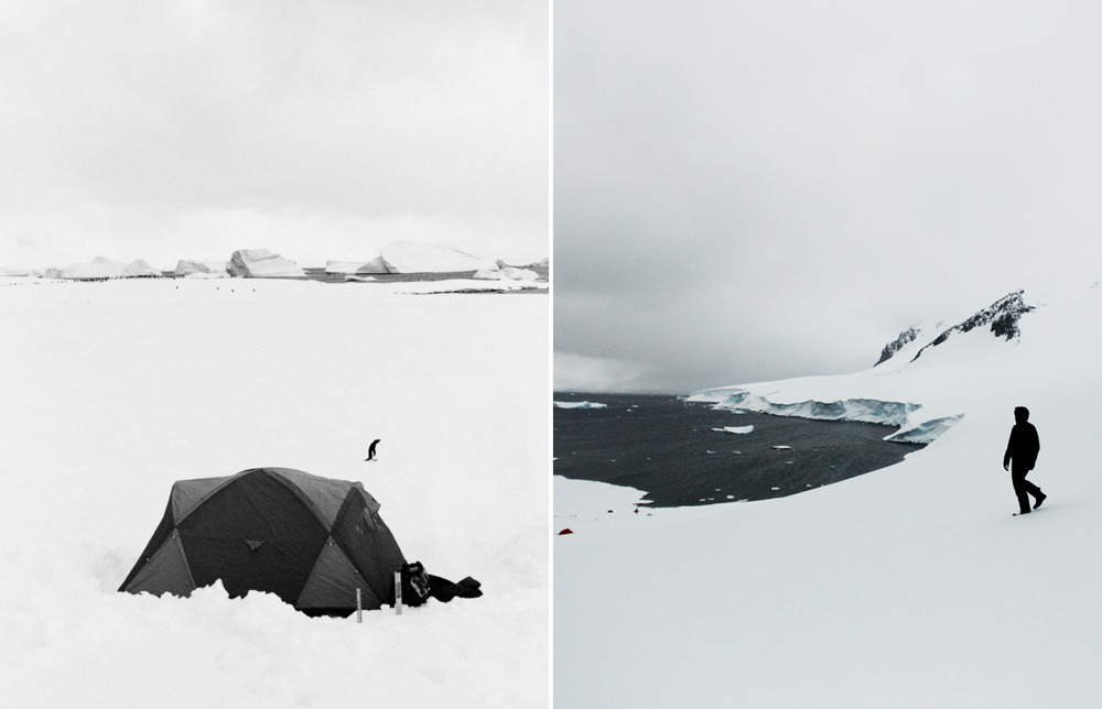 Camping with penguins and 'bergs on the Antarctica Peninsula
