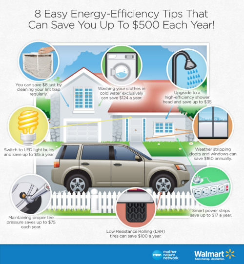 8 ways to save money while boosting your home's energy efficiency