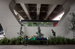 in-mexico-city-planners-turn-vacant-space-under