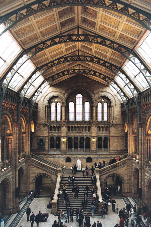 refluent:  natural history museum, London (by Katie_Pollitt)