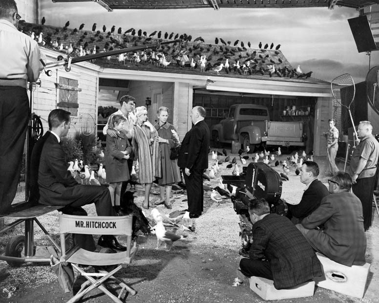 Alfred Hitchcock gives instructions to Veronica Cartwright, Rod Taylor, Tippi Hedren and Jessica Tandy prior to shooting the final scene of The Birds. Cinematographer Robert Burks is second from right, seated. All the essential documentaries on Alfred Hitchcock, including Hitchcock: Shadow of a Genius (1999), The Men Who Made the Movies: Alfred Hitchcock (1973), Reputations: Alfred Hitchcock (1999), In the Master's Shadow: Hitchcock's Legacy (2008), Paul Merton Looks at Alfred Hitchcock (2009), American Masters: Hitchcock, Selznick and the End of Hollywood (1999), Alfred Hitchcock Directs 'Frenzy' in 1972, Hitchcock: Alfred the Great (1994), Alfred Hitchcock - Masters of Cinema (Complete Interview in 1972), and A Talk with Hitchcock (1964).