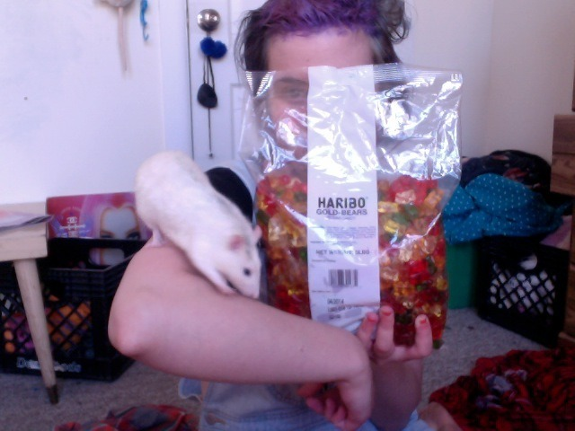 my 5lb bag of gummy bears from my amazon wishlist came for me today :) i'm trying to collect as many gummy candies/giant gummy bears/5lb bags as possible for a crazy gummy installation i have in mind/want to do in the future.