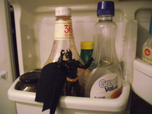 I found Batman in my fridge