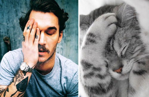 alanoudalmuhrij:  nydotr:  Hot Guys and Cats Striking Similar Poses       Hahaha❤❤