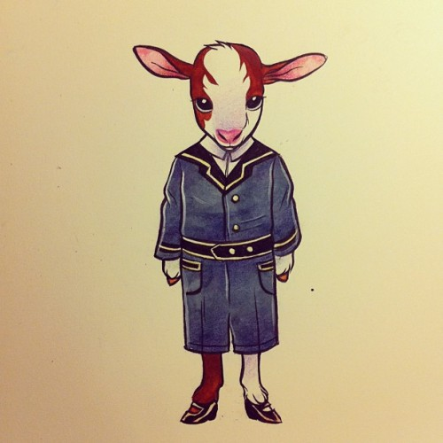 off to school, babby goat