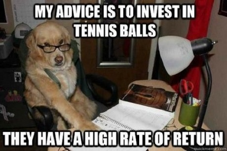 Stocks…by dog