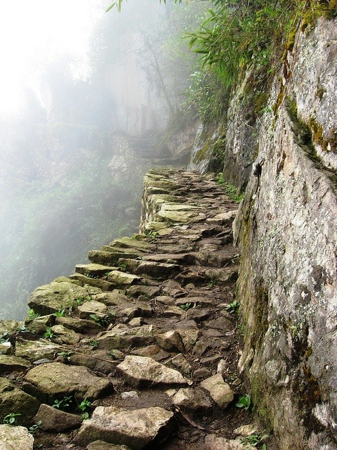 bluepueblo:  Inca Trail, Machu Picchu, Peru photo via susan