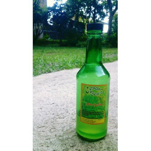 Tapuey Rice Wine from Baguio