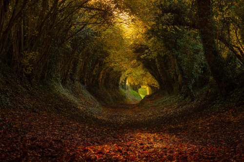 darkface:  Tunnel (by FinnHopson)