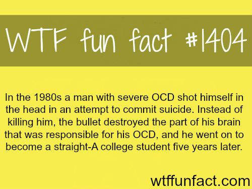 wtf-fun-factss:  WTF FUN FACTS HOME / SEE MORE tagged/  people  and people FACTS