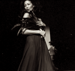 china machado wearing halston