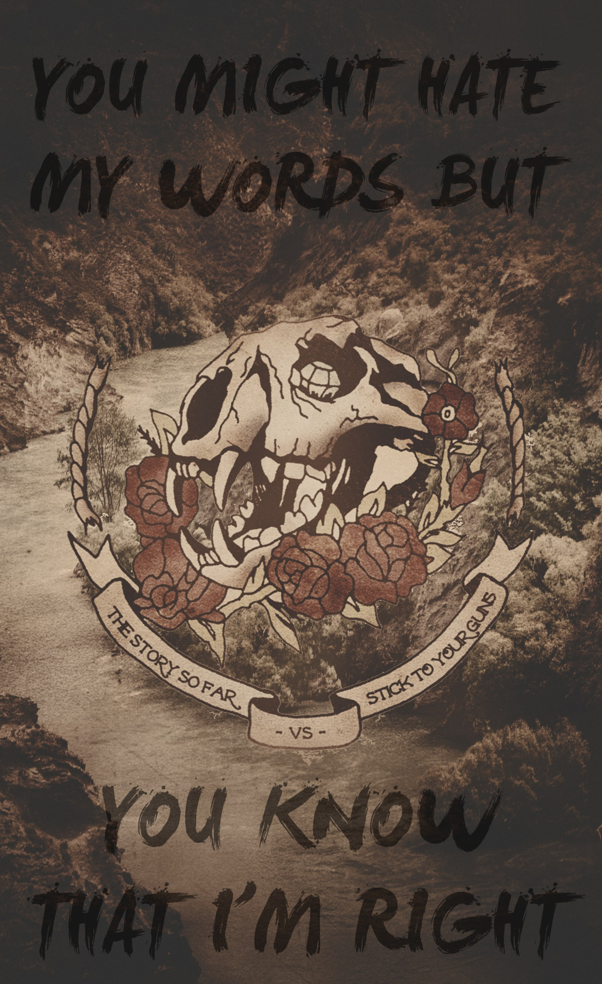 The Story So Far- Clairvoyance