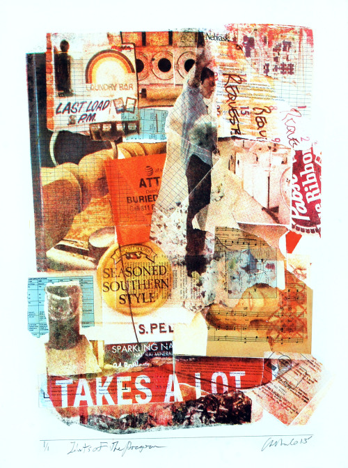 Limits of the Program Silkscreen, Collage 2013