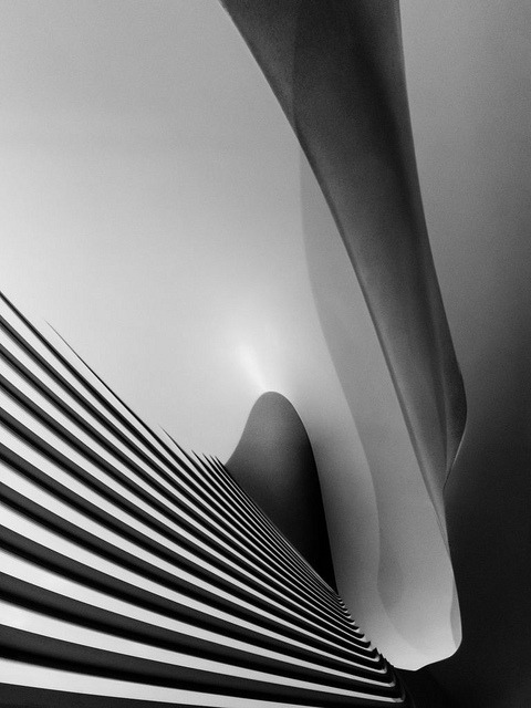 shrbr:  Zaha Hadid. Ivorypress exhibition #11 by Ximo Michavila on Flickr.