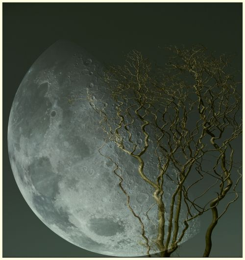 yama-bato:  By yama-bato ©yama-bato,2013 double exposure Moon via