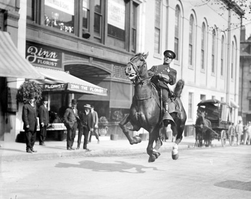 steroge:  Mounted cop in action on Tremont Street in Boston, Massachusetts, c.1920s (Boston Police)
