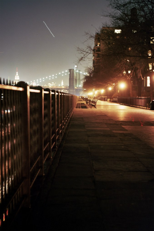 plasmatics-life:  Brooklyn-Heights
